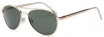 Young Adult Fly Sunglasses Gold