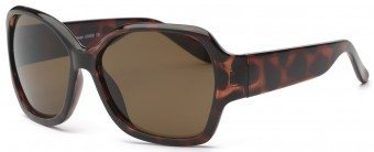 Young Adult Shine Sunglasses Tortoiseshell