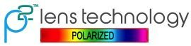 p2technology logo with white background